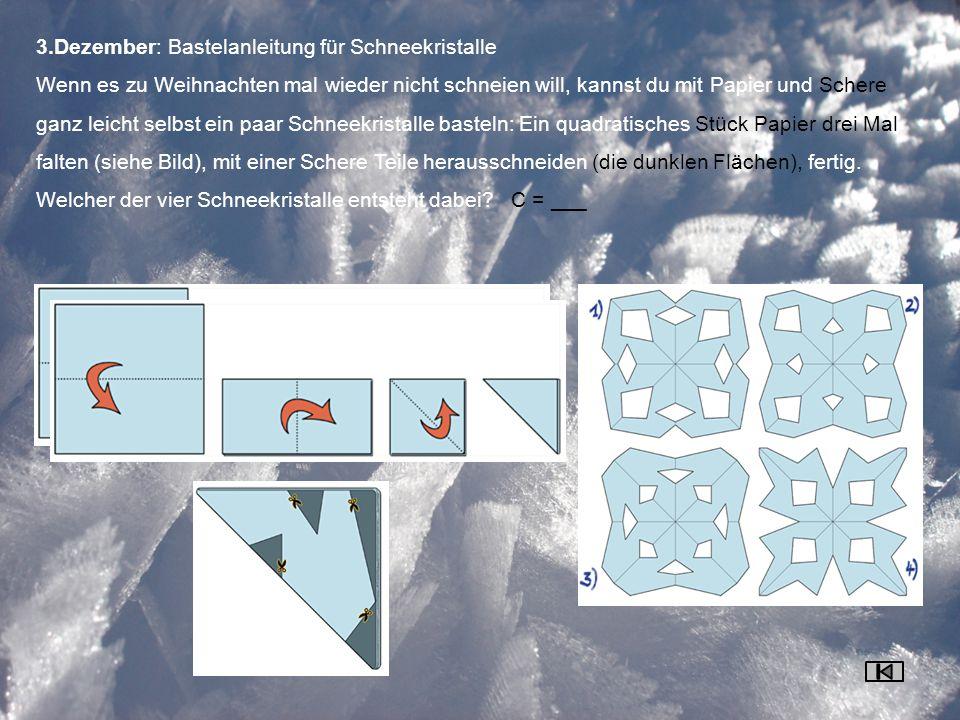 3.Dezember: Bastelanleitung für Schneekristalle