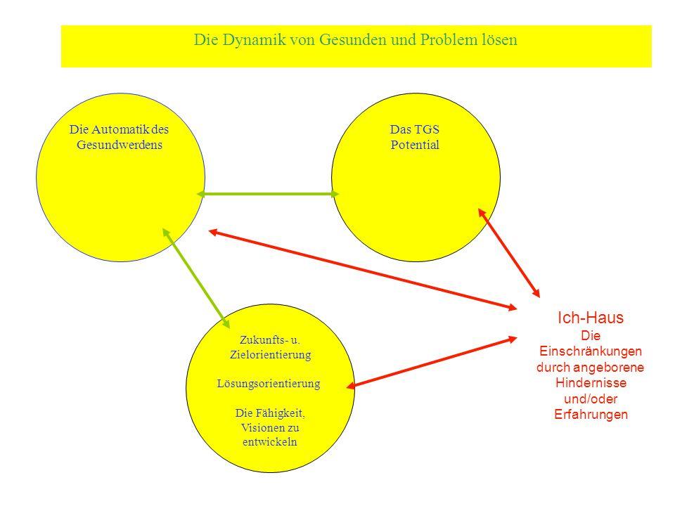 Die Dynamik von Gesunden und Problem lösen