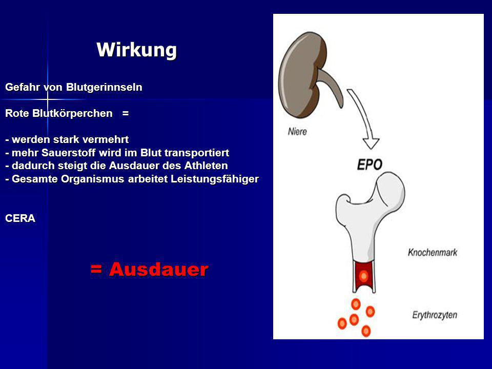 Wirkung = Ausdauer Gefahr von Blutgerinnseln Rote Blutkörperchen =
