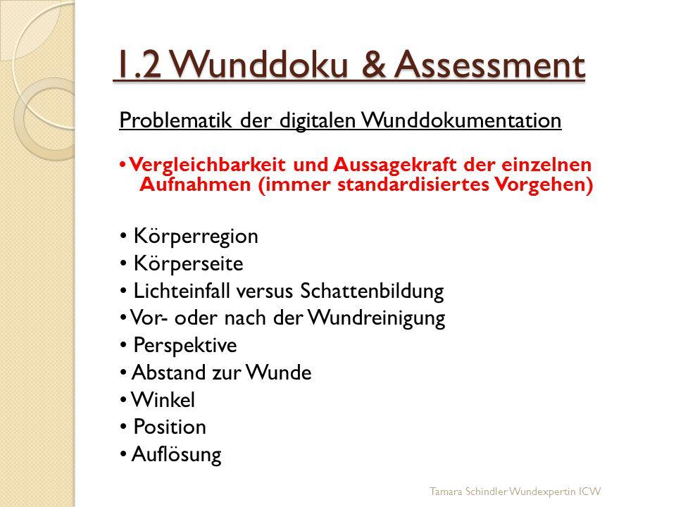 1.2 Wunddoku & Assessment Problematik der digitalen Wunddokumentation