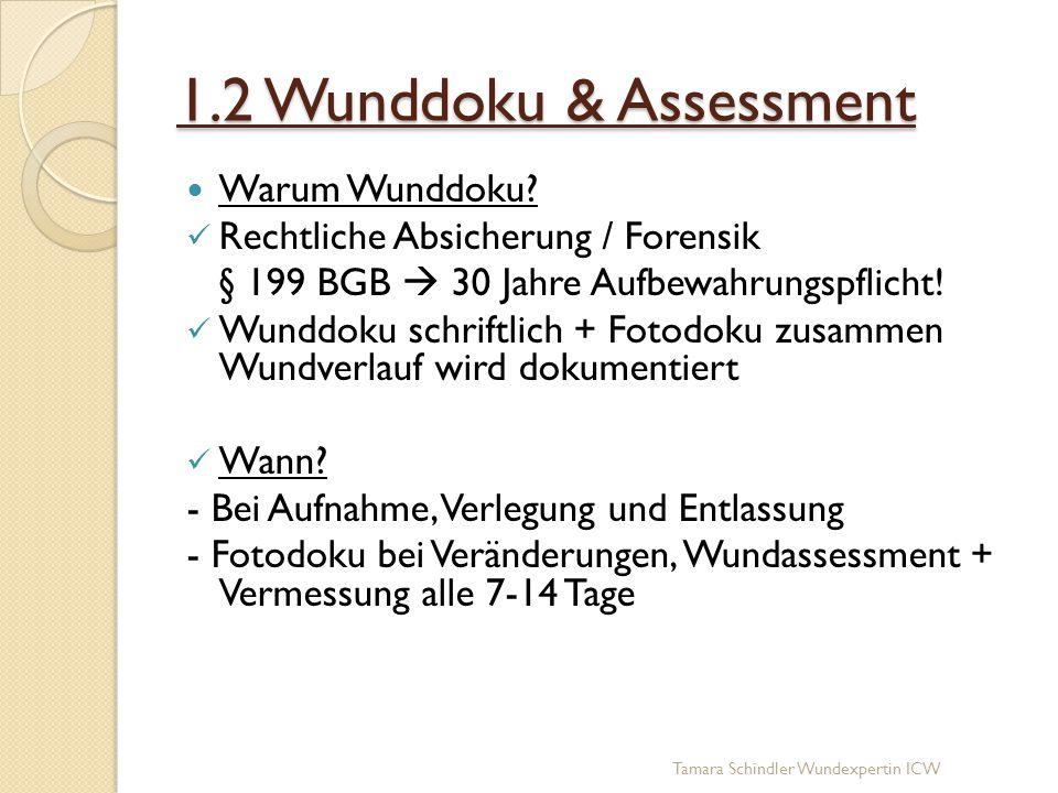 1.2 Wunddoku & Assessment Warum Wunddoku