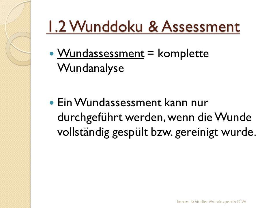 1.2 Wunddoku & Assessment Wundassessment = komplette Wundanalyse