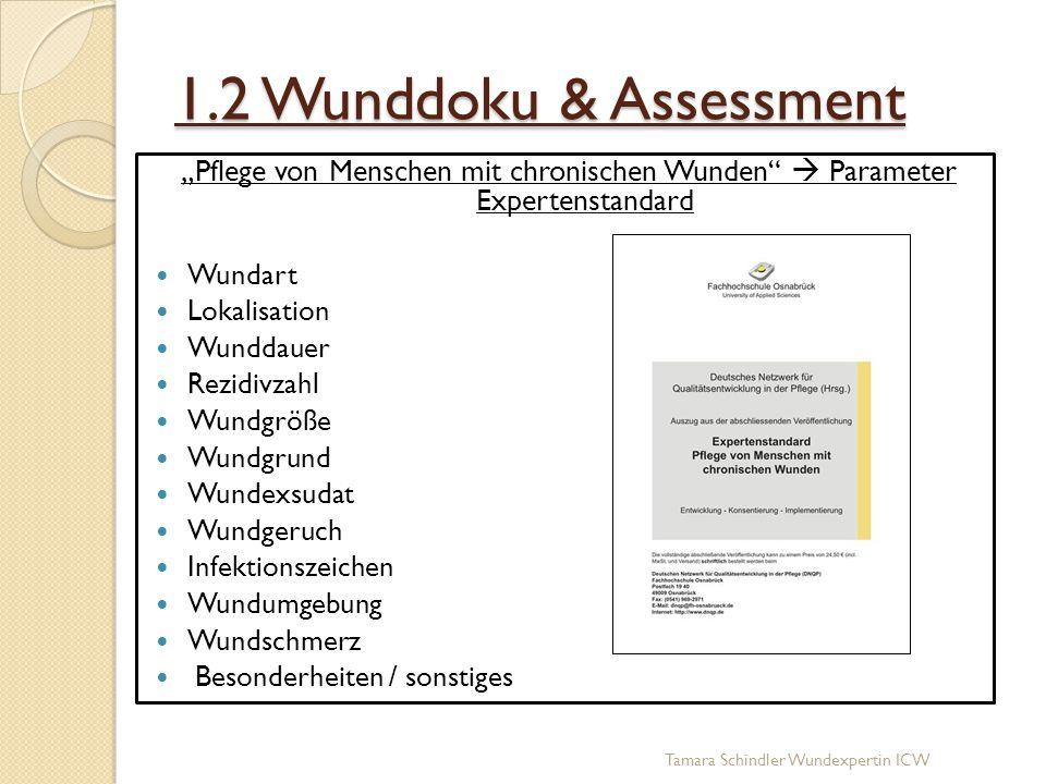 """1.2 Wunddoku & Assessment """"Pflege von Menschen mit chronischen Wunden  Parameter Expertenstandard."""