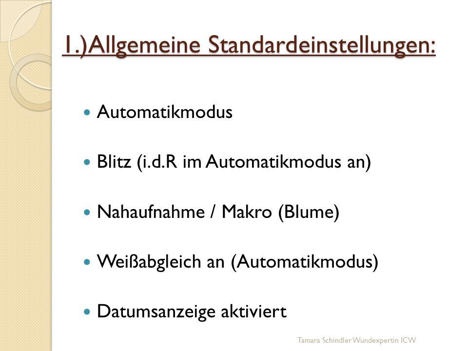 1.)Allgemeine Standardeinstellungen: