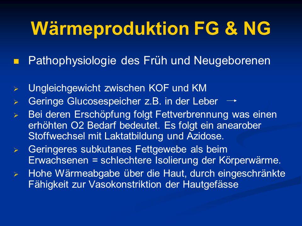 Wärmeproduktion FG & NG