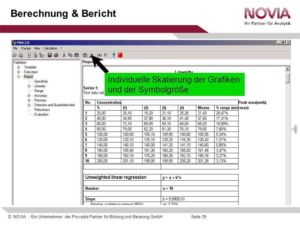 Berechnung & Bericht Individuelle Skalierung der Grafiken und der Symbolgröße