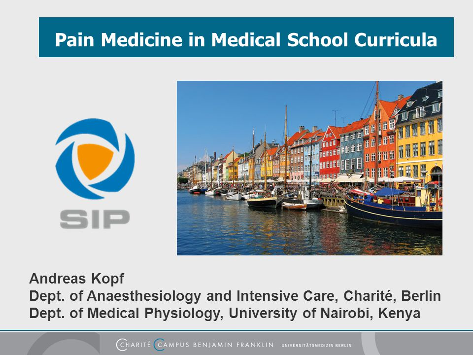 Pain Medicine in Medical School Curricula