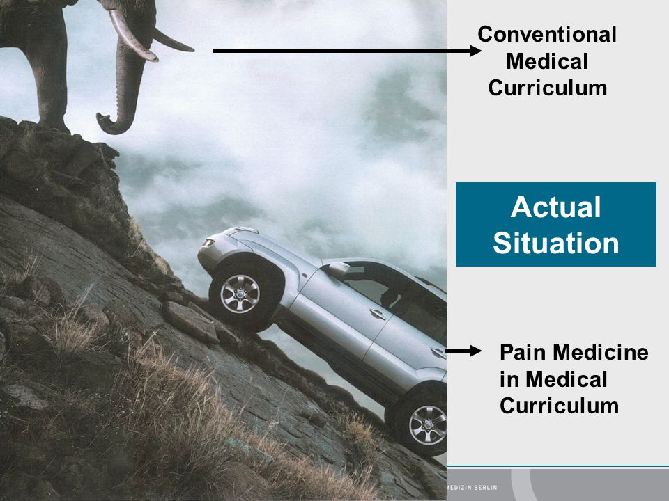Actual Situation Conventional Medical Curriculum Pain Medicine