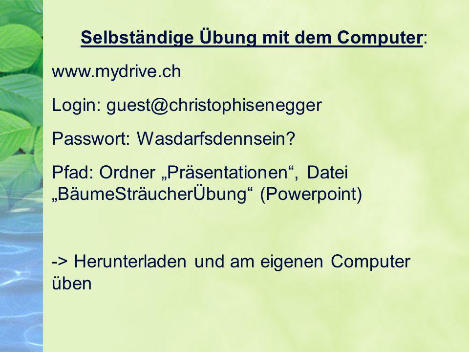 Selbständige Übung mit dem Computer: