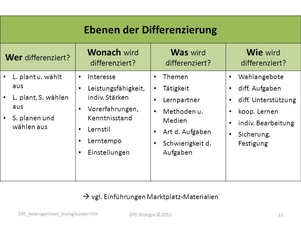Ebenen der Differenzierung