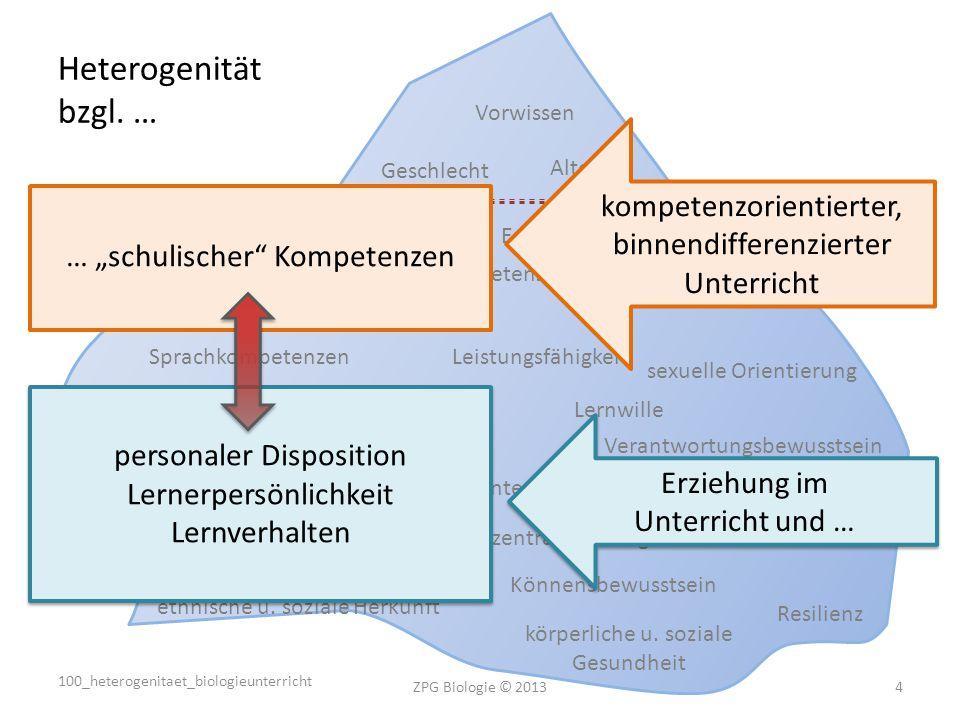 Heterogenität bzgl. … Vorwissen. kompetenzorientierter, binnendifferenzierter Unterricht. Geschlecht.