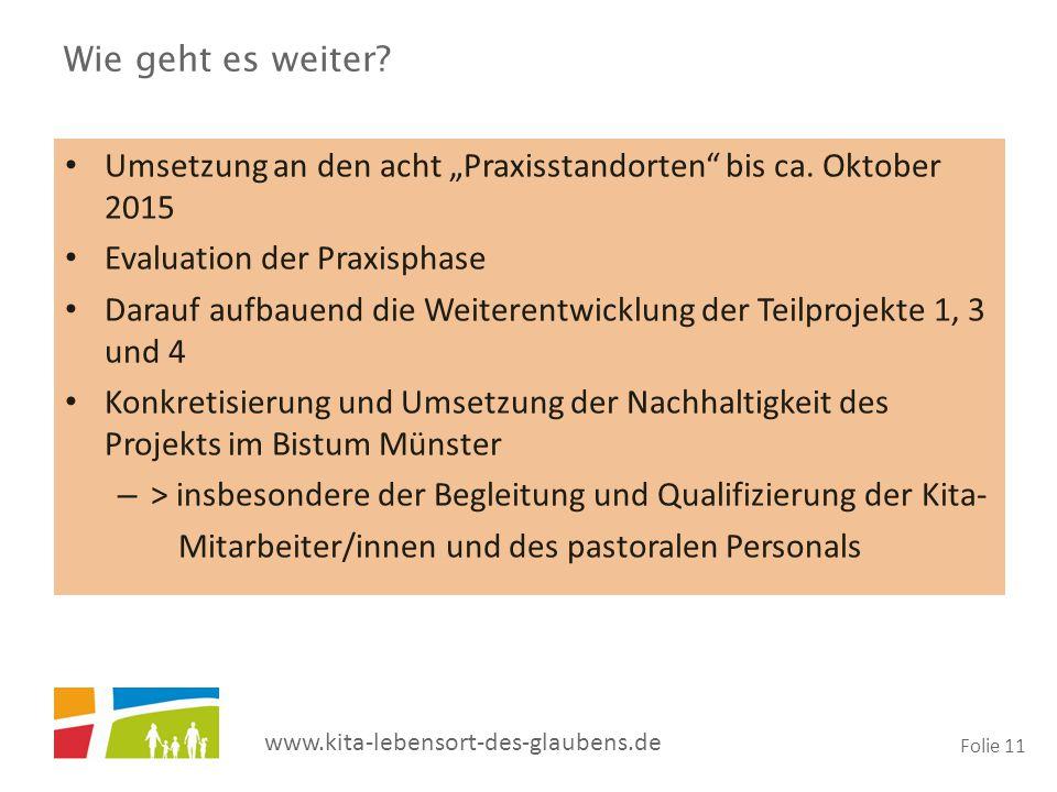 """Wie geht es weiter Umsetzung an den acht """"Praxisstandorten bis ca. Oktober 2015. Evaluation der Praxisphase."""