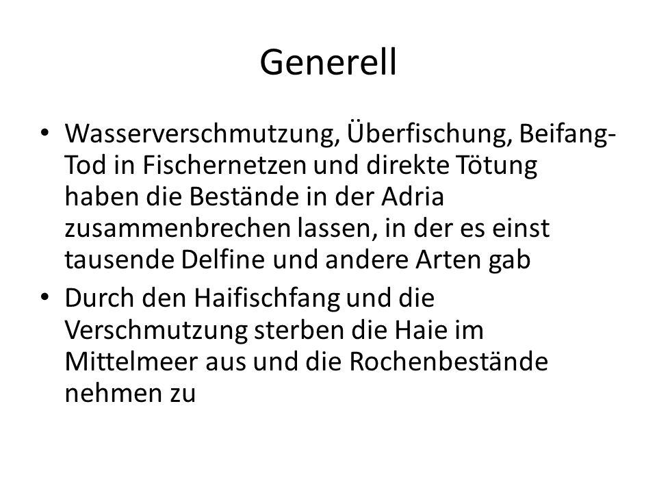 Generell