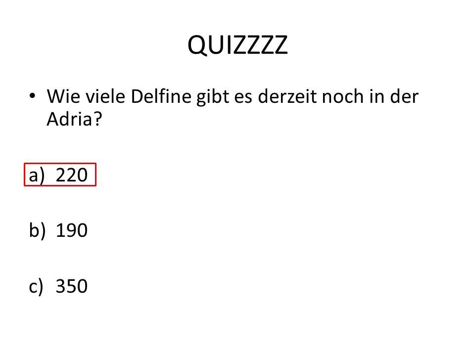 QUIZZZZ Wie viele Delfine gibt es derzeit noch in der Adria 220 190