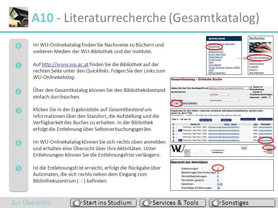 A10 - Literaturrecherche (Gesamtkatalog)