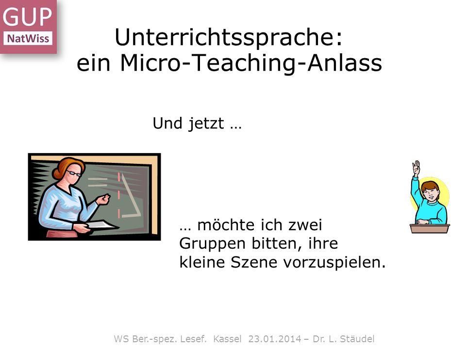 Unterrichtssprache: ein Micro-Teaching-Anlass