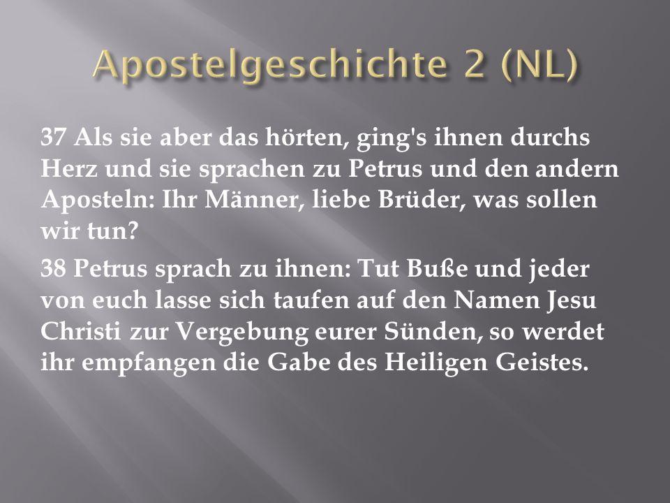 Apostelgeschichte 2 (NL)