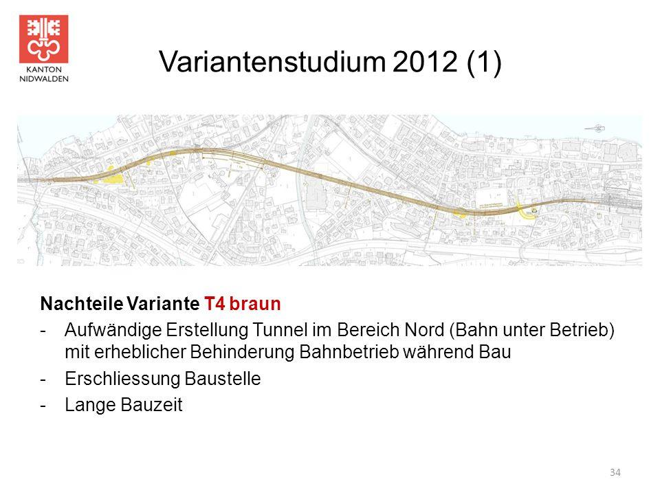 Variantenstudium 2012 (1) Nachteile Variante T4 braun