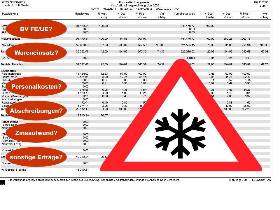 BV FE/UE Wareneinsatz Personalkosten Abschreibungen Zinsaufwand