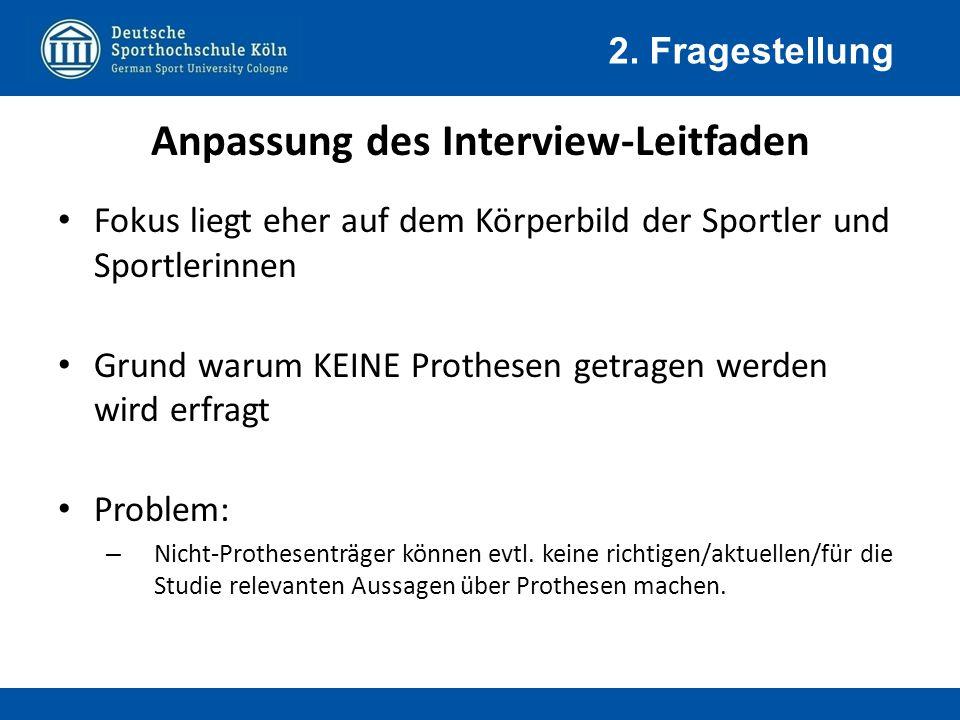 Anpassung des Interview-Leitfaden