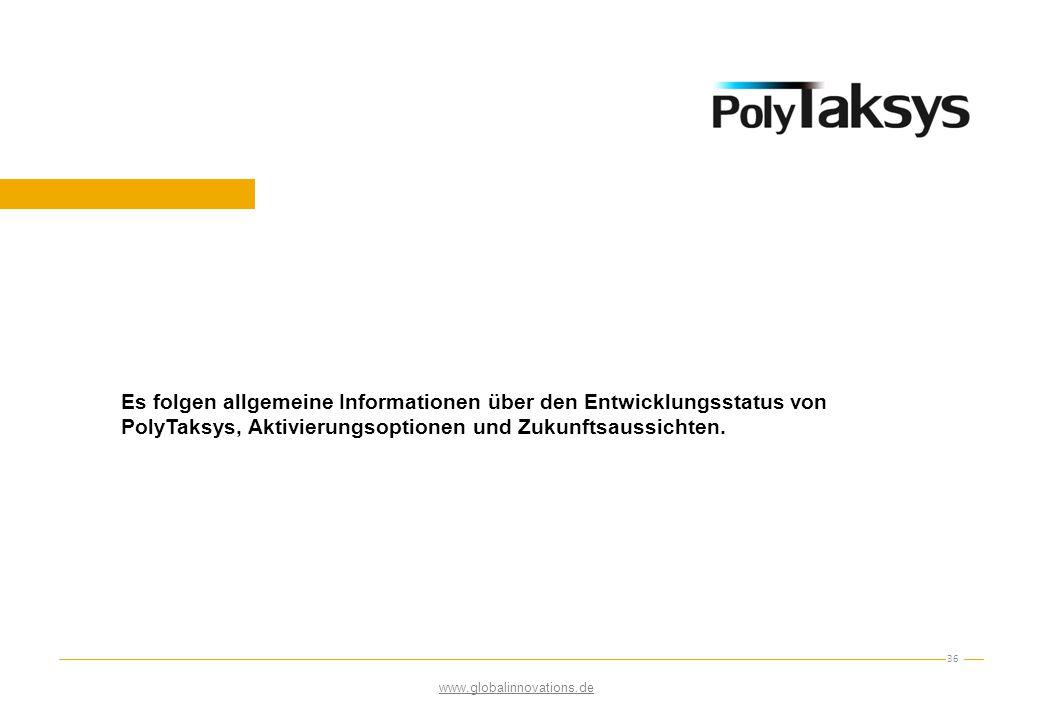 Es folgen allgemeine Informationen über den Entwicklungsstatus von PolyTaksys, Aktivierungsoptionen und Zukunftsaussichten.