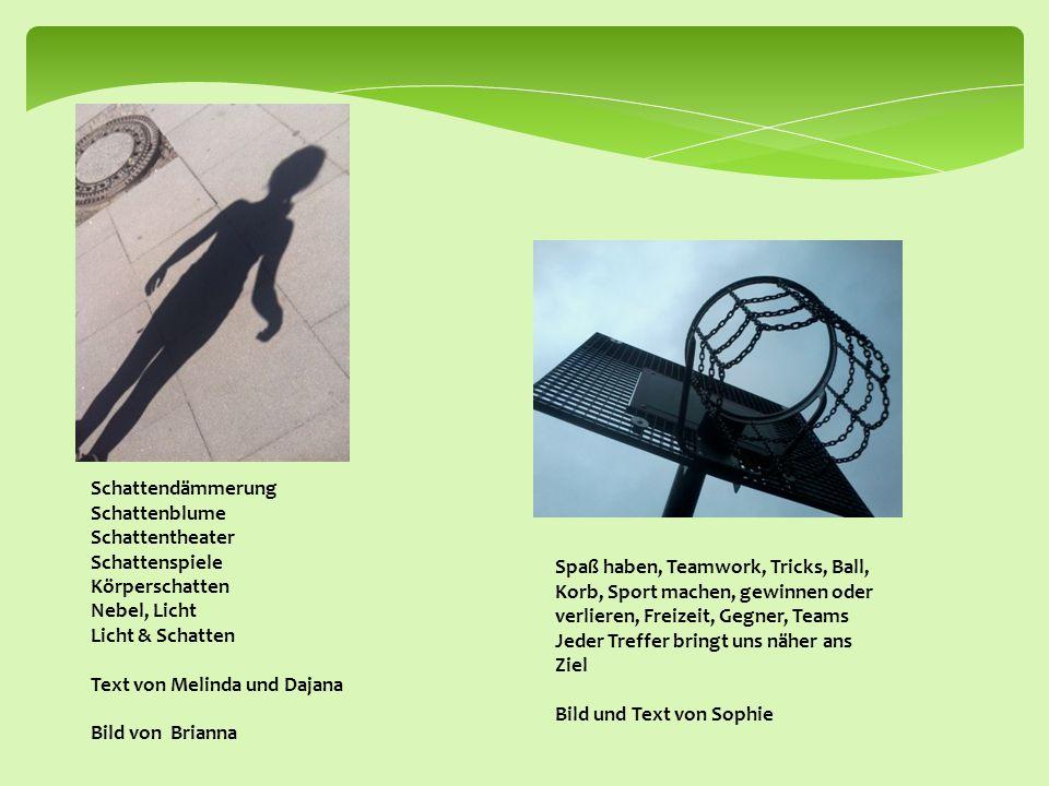 Schattendämmerung Schattenblume Schattentheater Schattenspiele Körperschatten Nebel, Licht Licht & Schatten