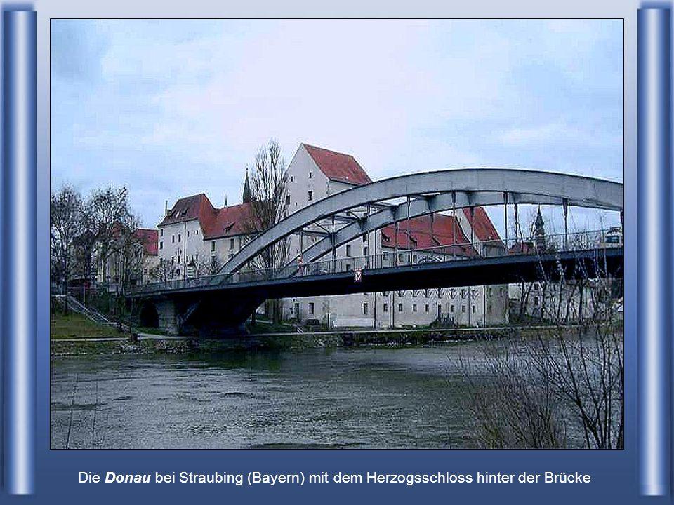Die Donau bei Straubing (Bayern) mit dem Herzogsschloss hinter der Brücke