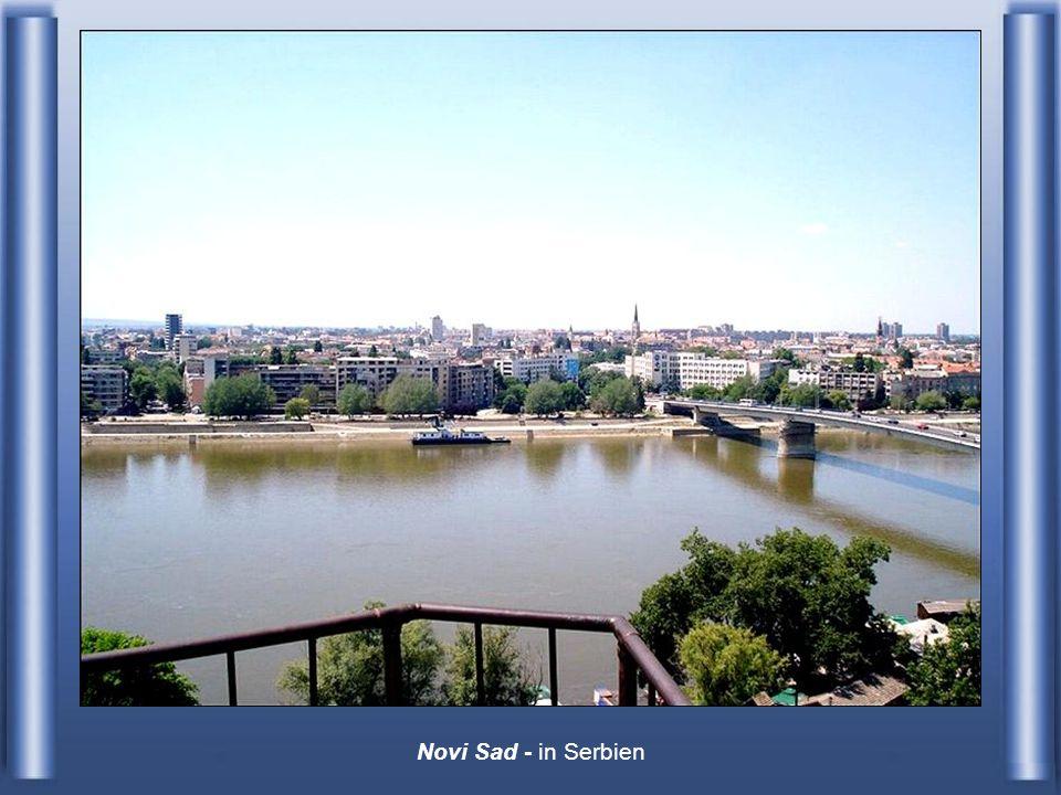 Novi Sad - in Serbien