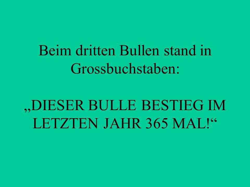 """Beim dritten Bullen stand in Grossbuchstaben: """"DIESER BULLE BESTIEG IM LETZTEN JAHR 365 MAL!"""