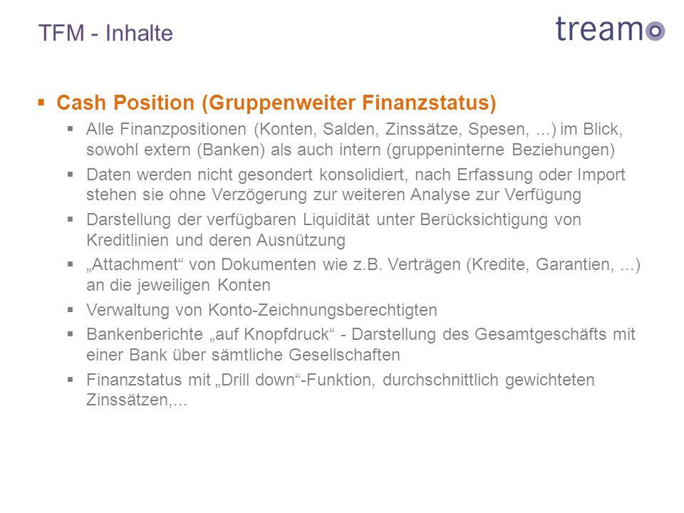 TFM - Inhalte Cash Position (Gruppenweiter Finanzstatus)