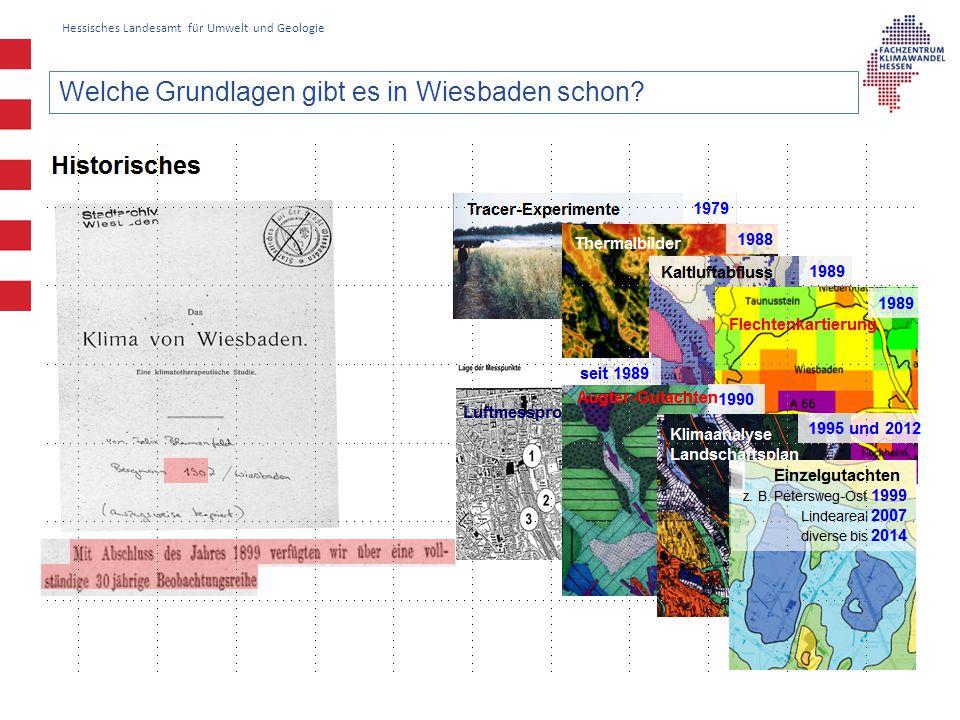 Welche Grundlagen gibt es in Wiesbaden schon