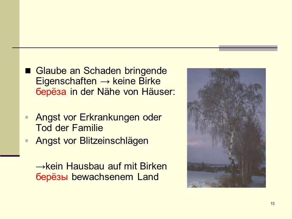 Glaube an Schaden bringende Eigenschaften → keine Birke берëза in der Nähe von Häuser: