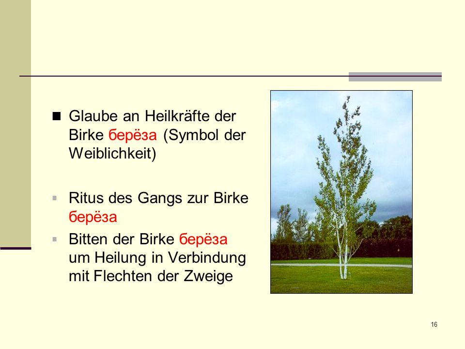 Glaube an Heilkräfte der Birke берëза (Symbol der Weiblichkeit)