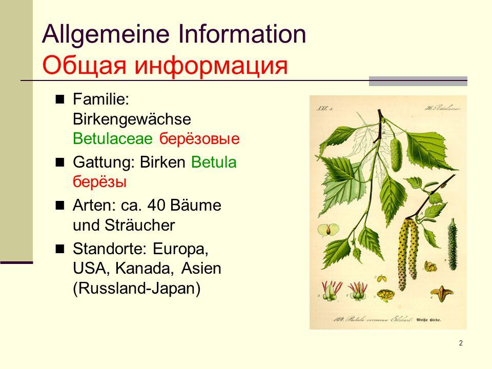 Allgemeine Information Общая информация