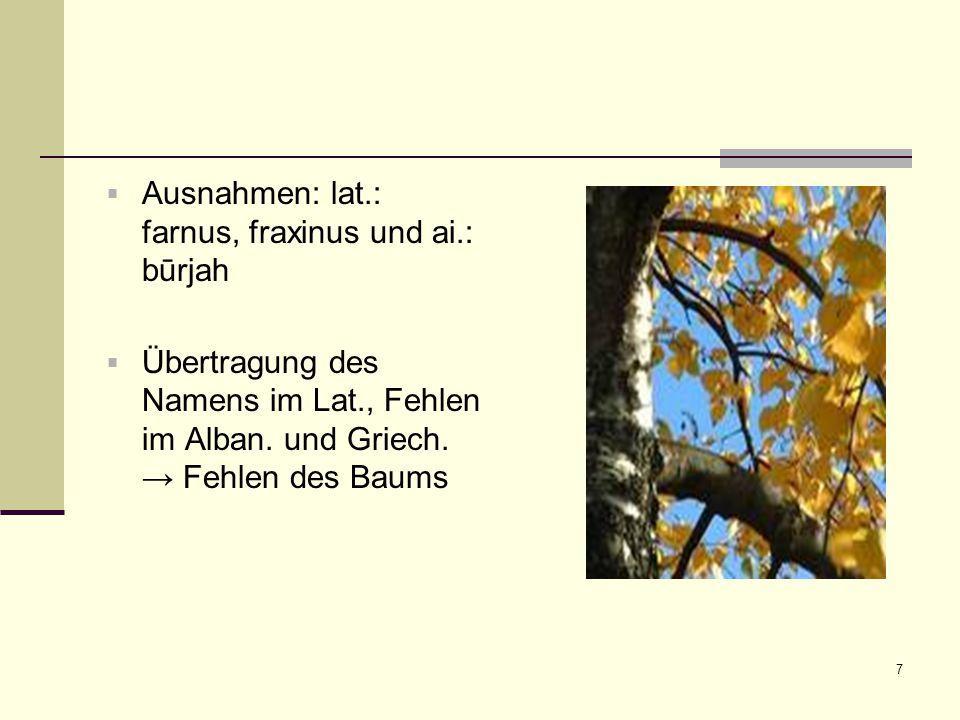 Ausnahmen: lat.: farnus, fraxinus und ai.: būrjah