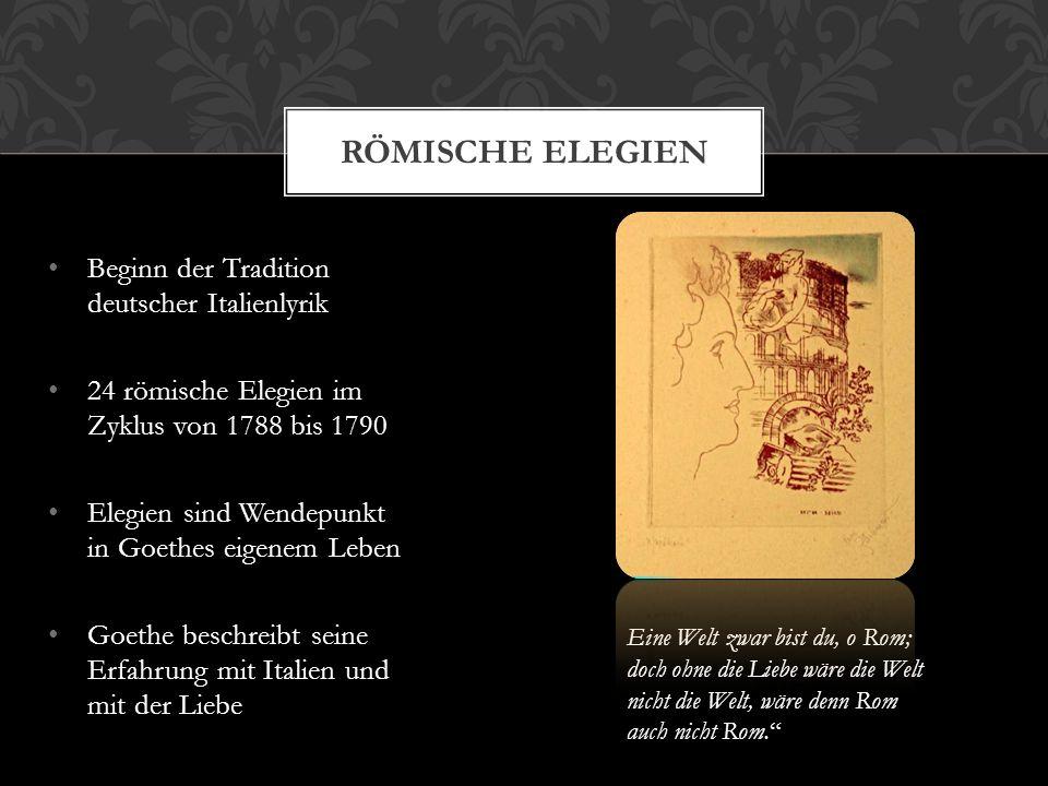 Römische Elegien Beginn der Tradition deutscher Italienlyrik