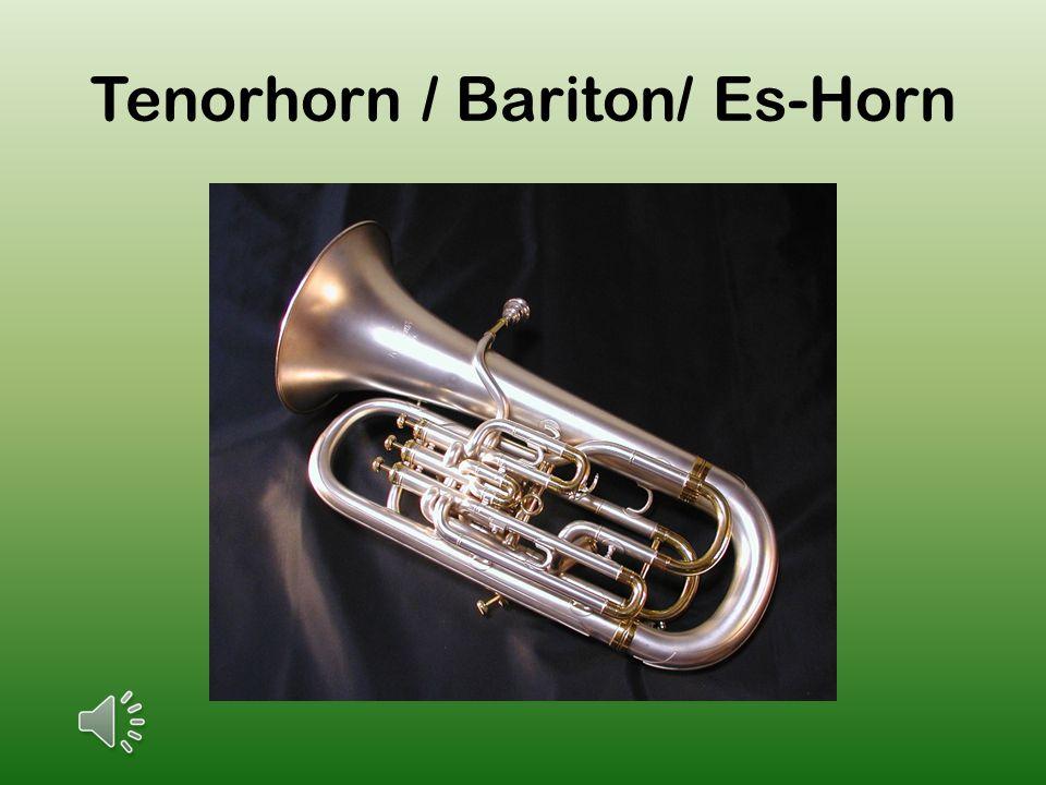 Tenorhorn / Bariton/ Es-Horn