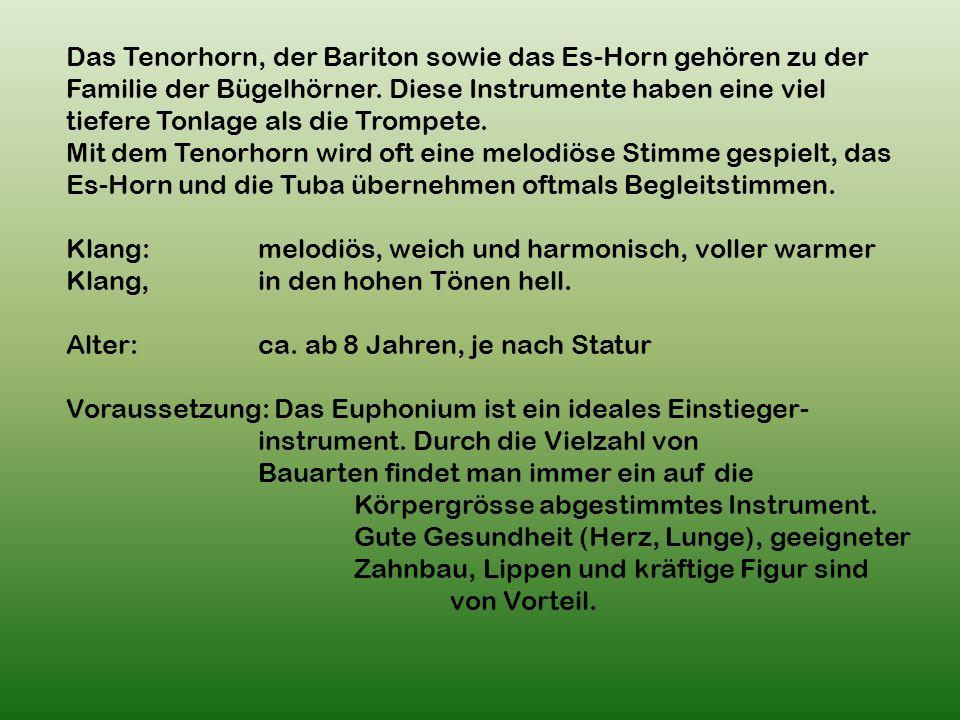 Das Tenorhorn, der Bariton sowie das Es-Horn gehören zu der Familie der Bügelhörner.
