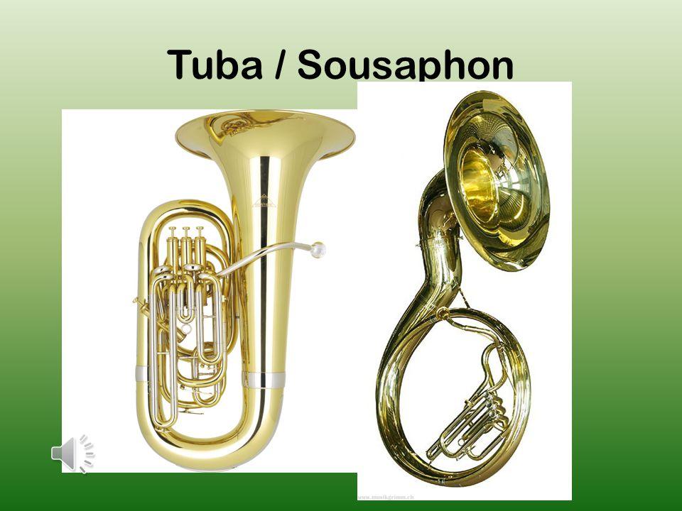 Tuba / Sousaphon