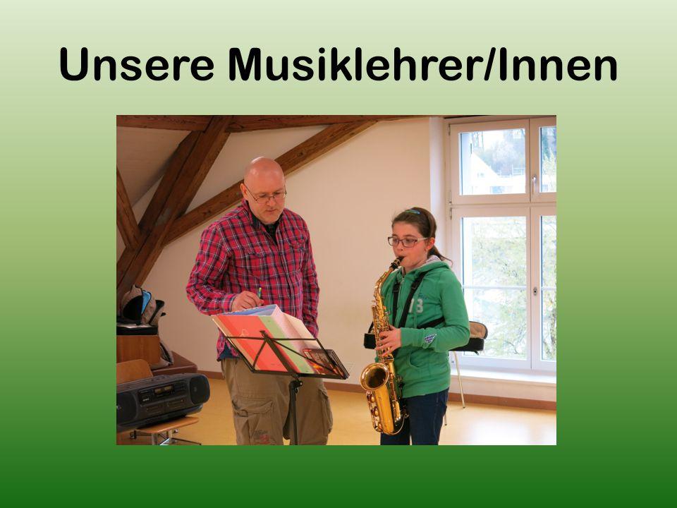 Unsere Musiklehrer/Innen