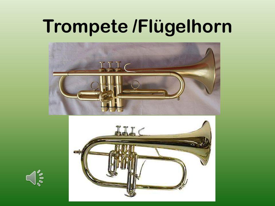 Trompete /Flügelhorn