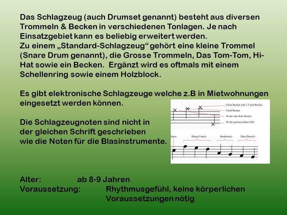 Das Schlagzeug (auch Drumset genannt) besteht aus diversen Trommeln & Becken in verschiedenen Tonlagen.