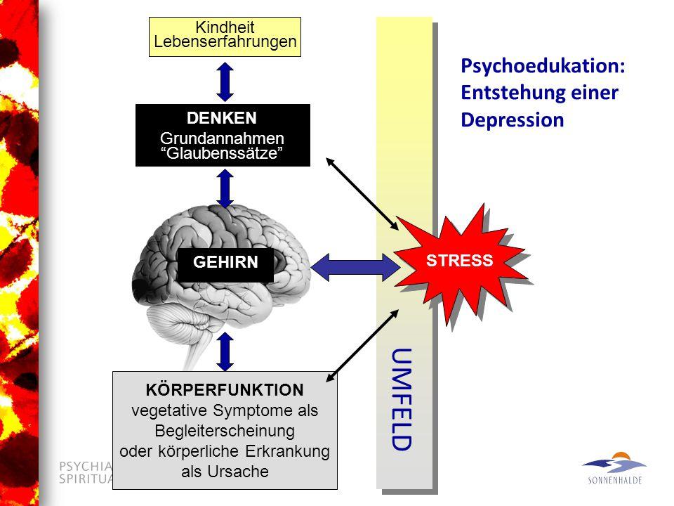 UMFELD Psychoedukation: Entstehung einer Depression Kindheit