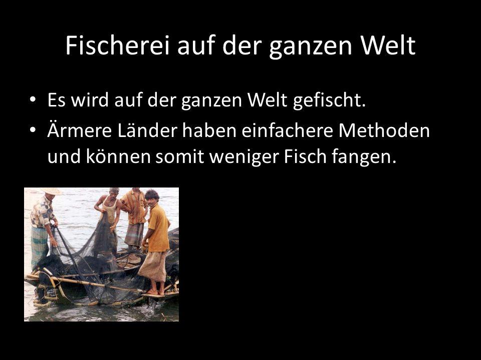 Fischerei auf der ganzen Welt