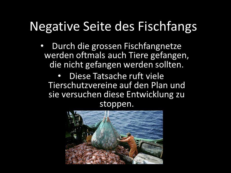 Negative Seite des Fischfangs
