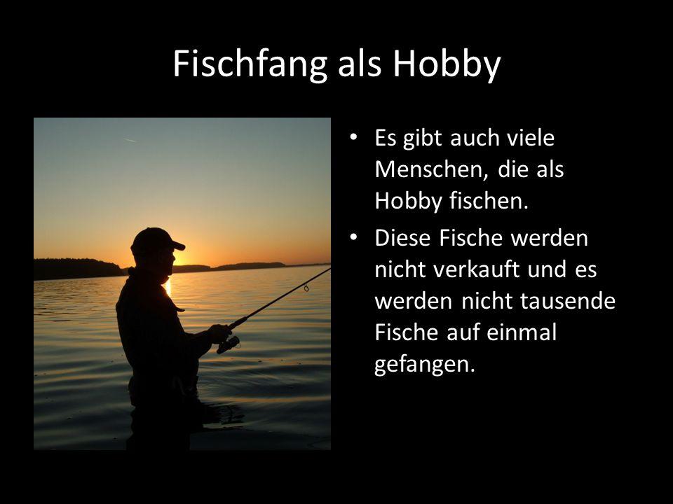 Fischfang als Hobby Es gibt auch viele Menschen, die als Hobby fischen.