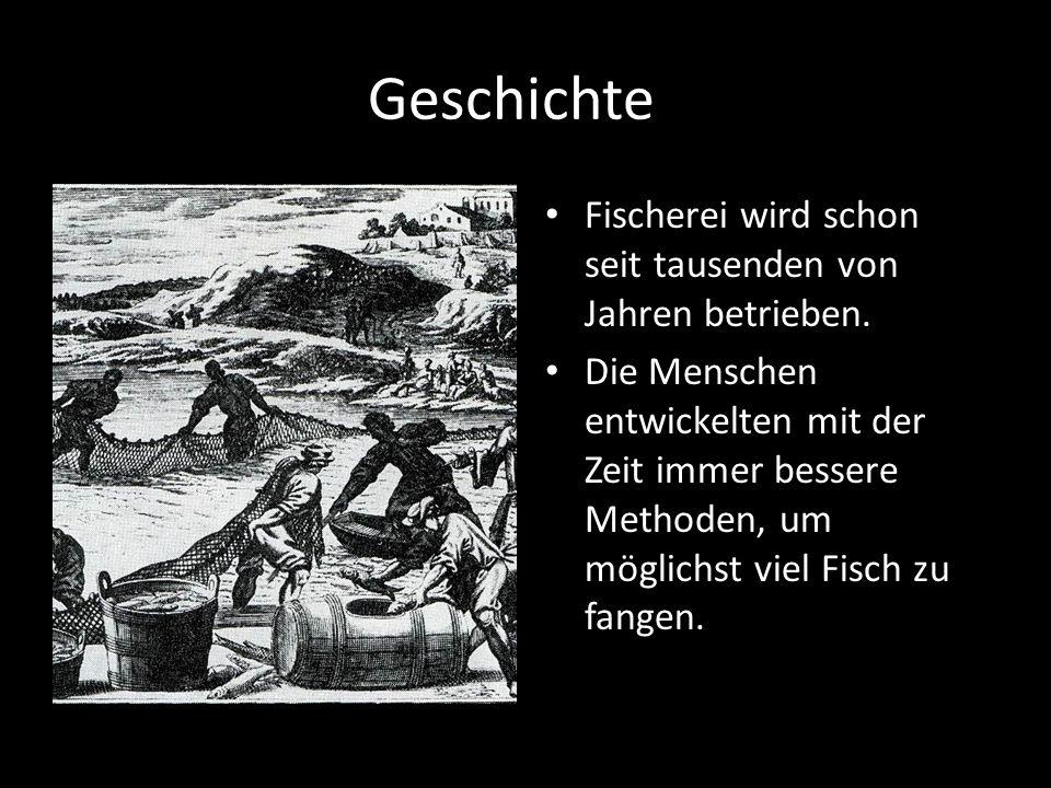 Geschichte Fischerei wird schon seit tausenden von Jahren betrieben.