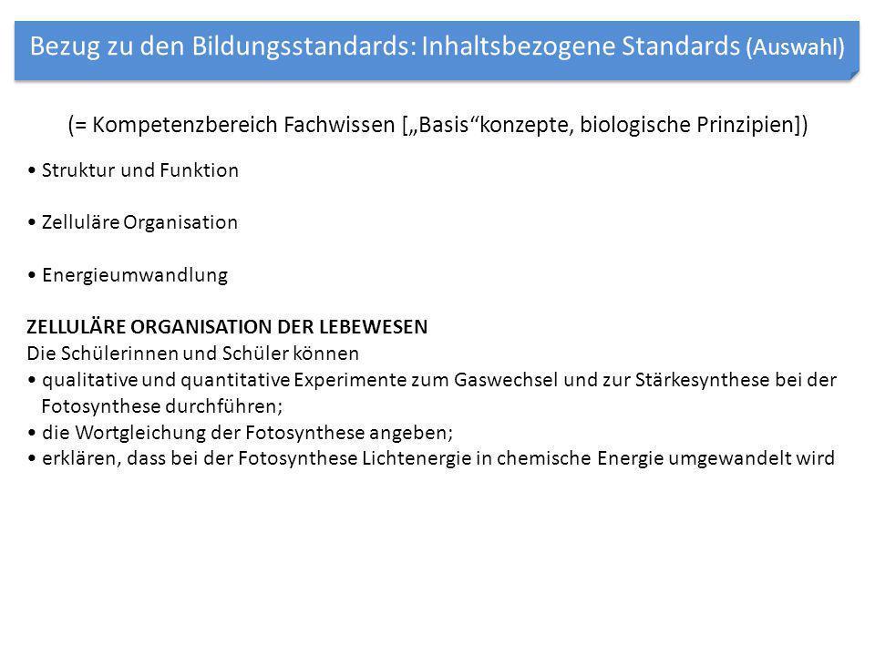 Bezug zu den Bildungsstandards: Inhaltsbezogene Standards (Auswahl)