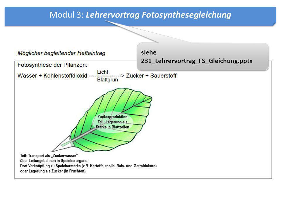 Modul 3: Lehrervortrag Fotosynthesegleichung