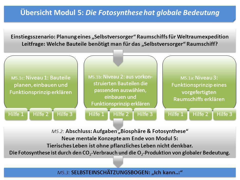 Übersicht Modul 5: Die Fotosynthese hat globale Bedeutung